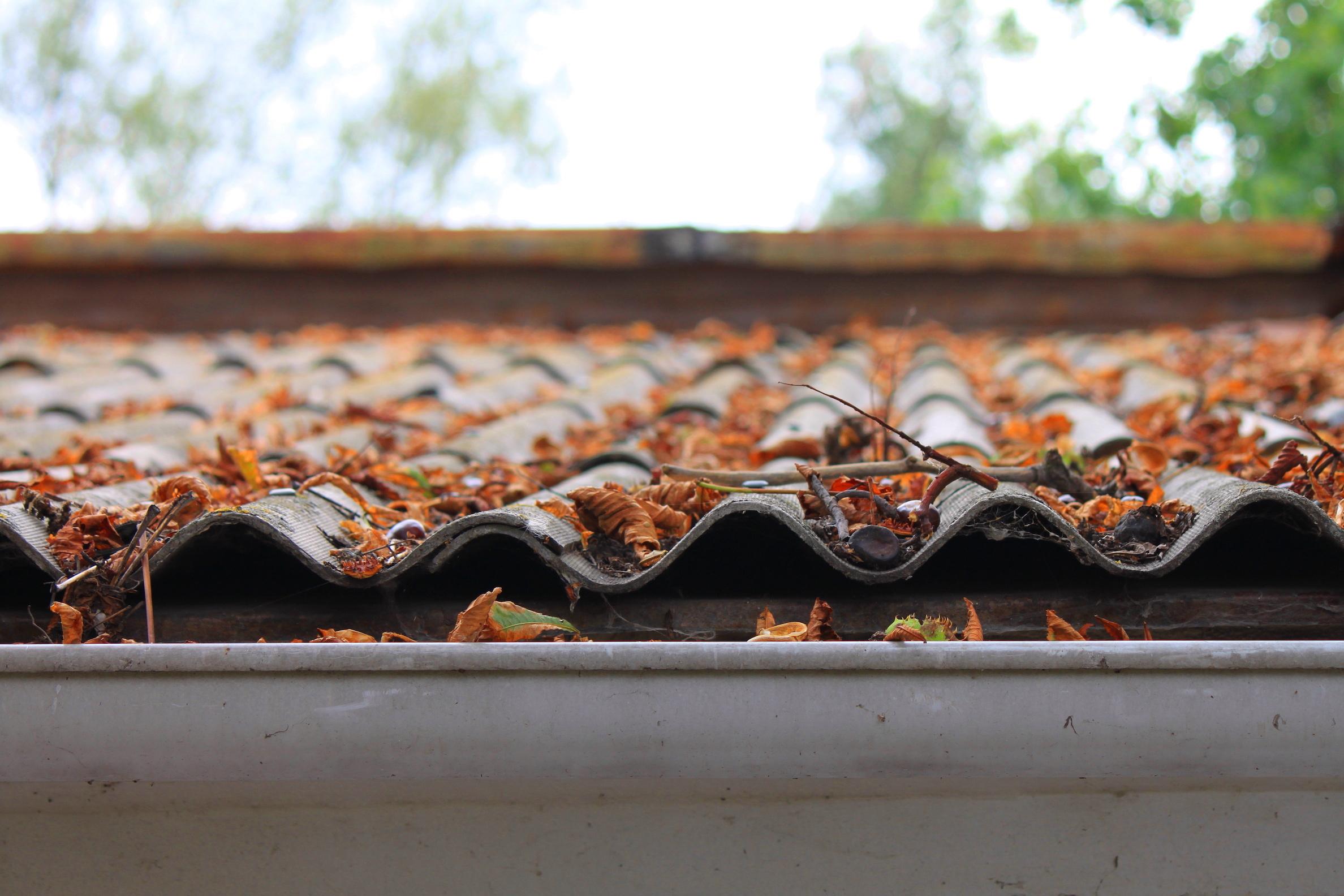 Tile roof maintenance MT Lebanon